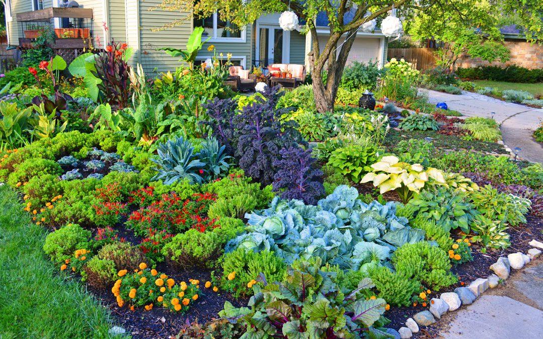 Tips Memilih Jasa Tukang Taman Gresik Profesional